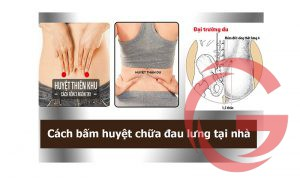 Cách bấm huyệt chữa đau lưng tại nhà